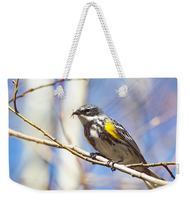 Nature Weekender Tote Bag featuring the photograph Snack Time by Crystal Massop