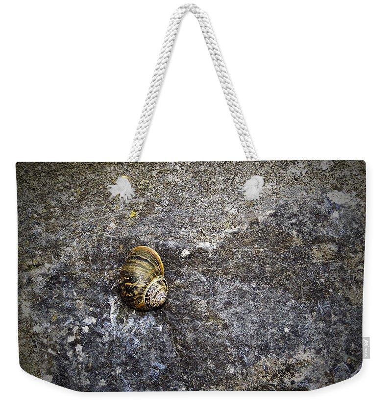 Irish Weekender Tote Bag featuring the photograph Snail At Ballybeg Priory County Cork Ireland by Teresa Mucha