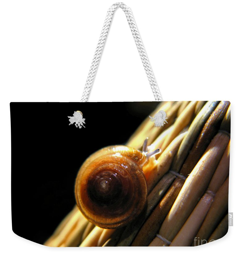 Macro Weekender Tote Bag featuring the photograph Snail by Todd A Blanchard