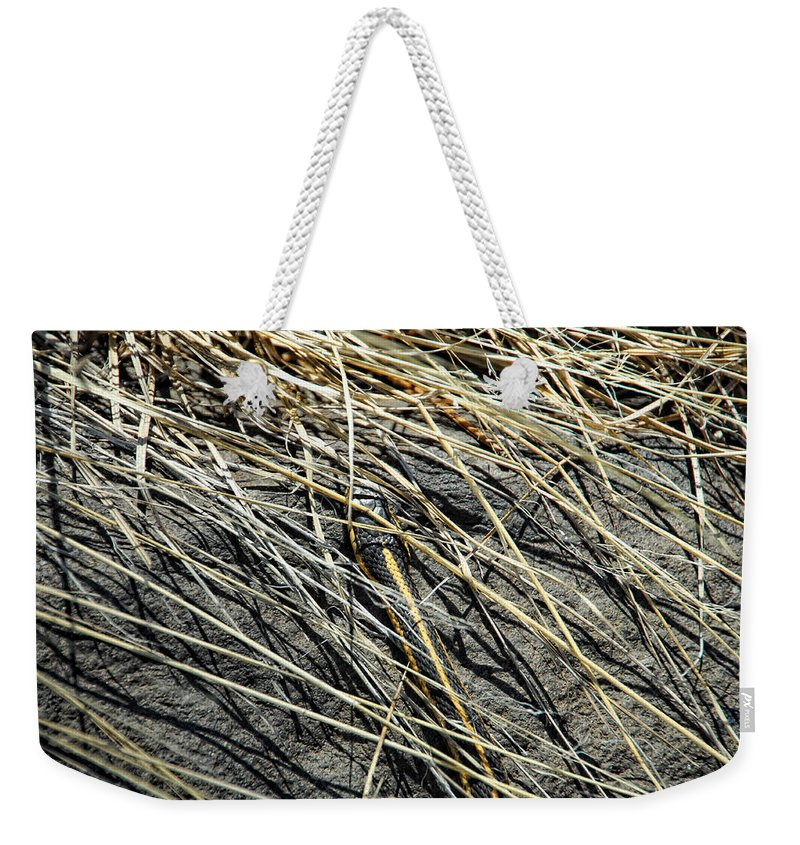 Snake Weekender Tote Bag featuring the photograph Snake In The Grass by Donna Blackhall