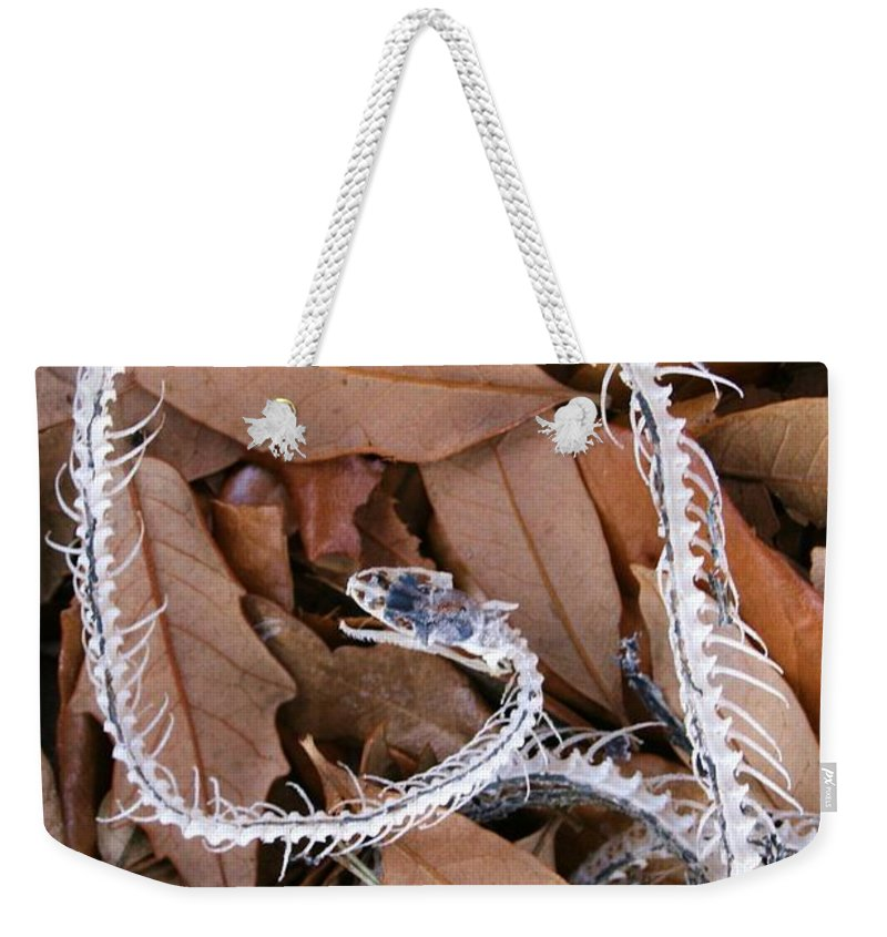 Photo For Sale Weekender Tote Bag featuring the photograph Snake Skeleton by Robert Wilder Jr