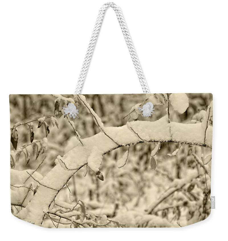 Snow Weekender Tote Bag featuring the photograph Snow Arch by LeeAnn McLaneGoetz McLaneGoetzStudioLLCcom