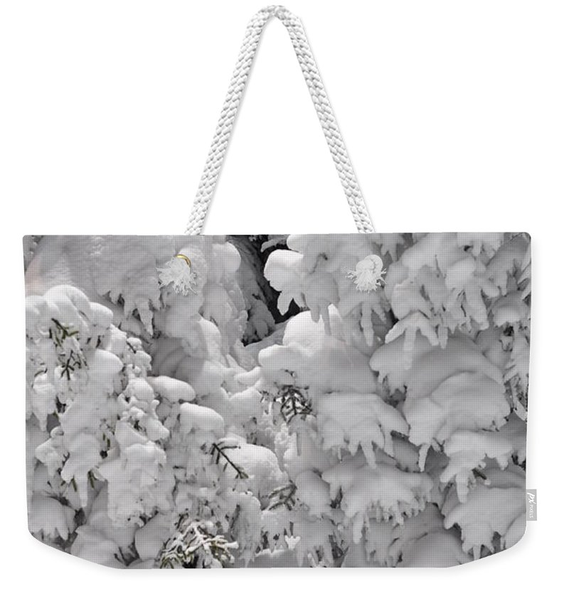 Snow Weekender Tote Bag featuring the photograph Snow Coat by Alex Grichenko