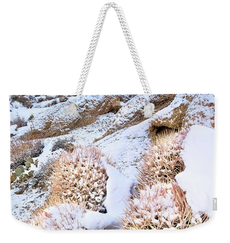 North America Weekender Tote Bag featuring the photograph Snow Covered Cactus Below Mount Whitney Eastern Sierras by Dave Welling