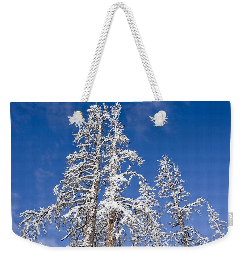 Winter Weekender Tote Bag featuring the photograph Snow Covered by Kelley King
