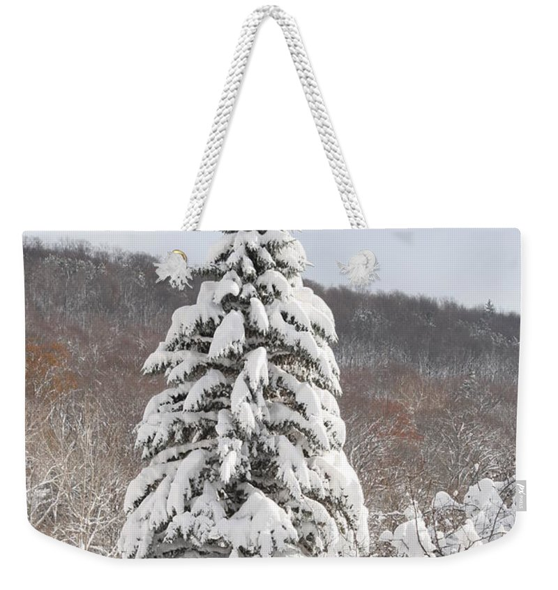 Snow Weekender Tote Bag featuring the photograph Snow Covered Spruce by Paul Borden