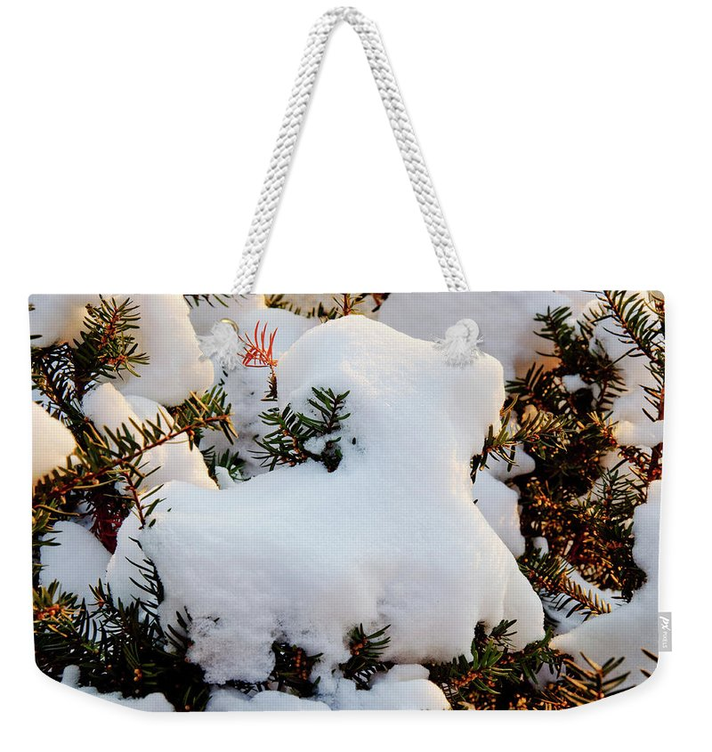 Goat Weekender Tote Bag featuring the photograph Snow Goat by Andee Design