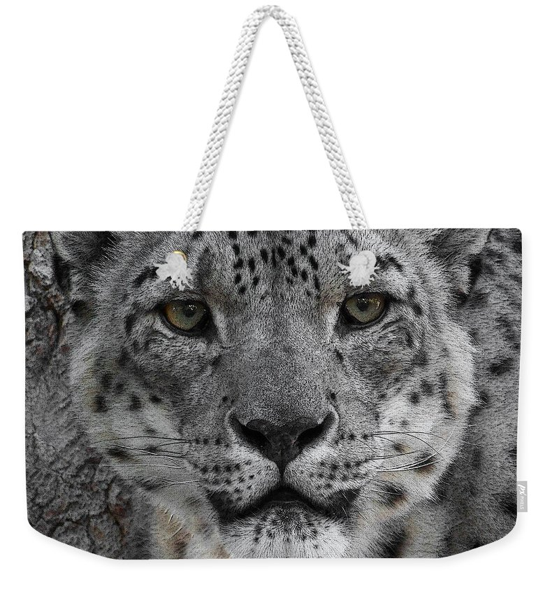 Animals Weekender Tote Bag featuring the photograph Snow Leopard 5 Posterized by Ernie Echols