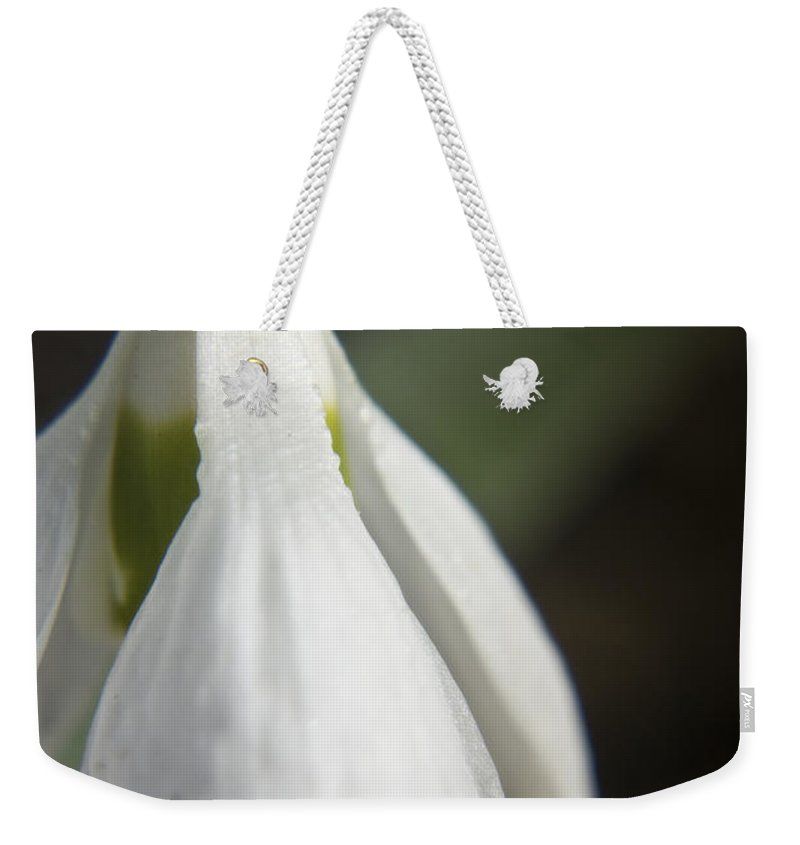 Snowdrop Weekender Tote Bag featuring the photograph Snowdrop by Teresa Mucha