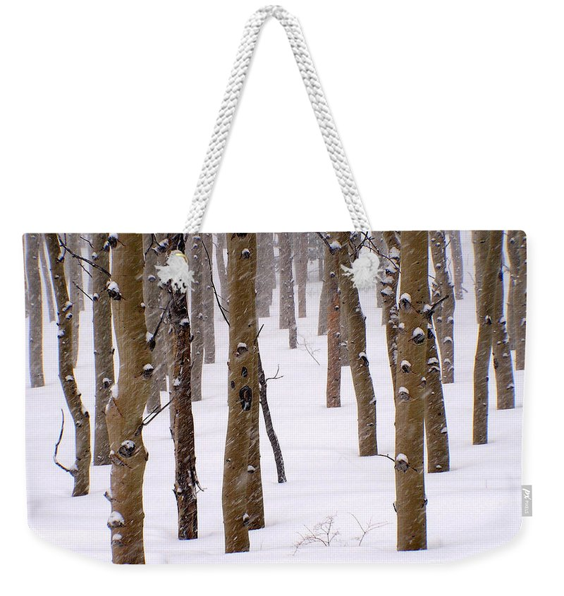 Aspen Weekender Tote Bag featuring the photograph Snowy Aspen by Carol Milisen
