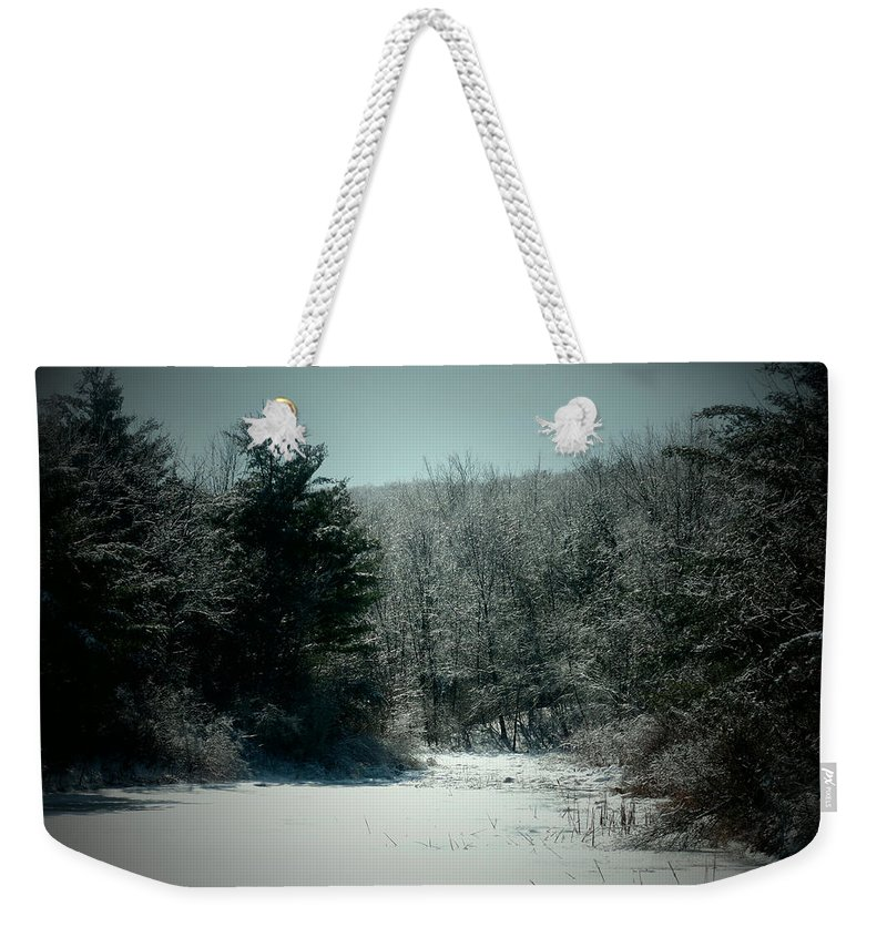 Forest Weekender Tote Bag featuring the photograph Snowy Creek Bend by Gail Schmiedlin