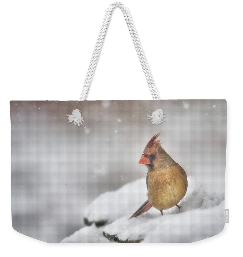 Cardinal Weekender Tote Bag featuring the photograph Snowy Day Lady by Sue Capuano