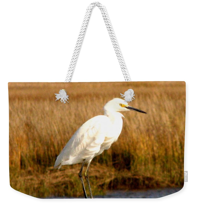 Bird Egret snowy Egret white Egret Seabird Animals Nature Wildlife Weekender Tote Bag featuring the photograph Snowy Egret 2 by J M Farris Photography