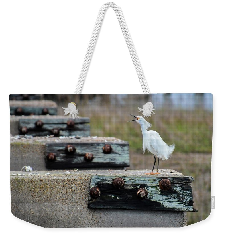 Avian Weekender Tote Bag featuring the photograph Snowy Egret #2 by Tim Bond