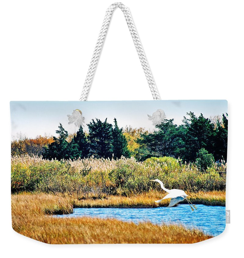 Landscape Weekender Tote Bag featuring the photograph Snowy Egret-island Beach State Park N.j. by Steve Karol