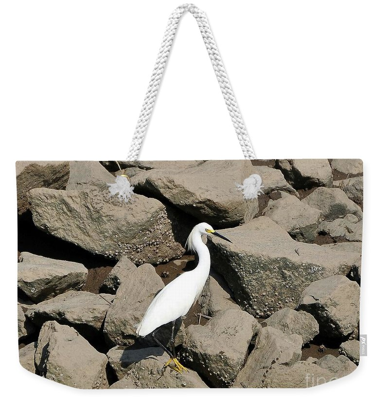 Snowy Egret Weekender Tote Bag featuring the photograph Snowy Egret On The Rocks by Al Powell Photography USA