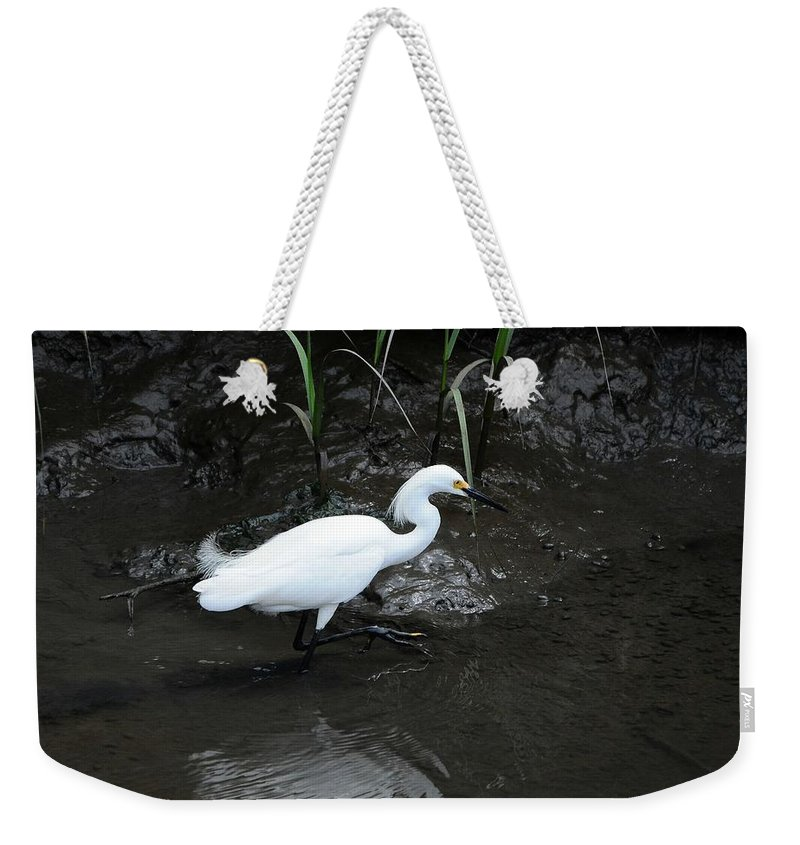 Snowy Egret Weekender Tote Bag featuring the photograph Snowy In The Mud by Al Powell Photography USA