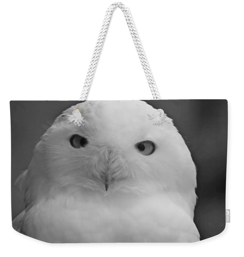 Birds Weekender Tote Bag featuring the photograph Snowy Owl by Phill Doherty