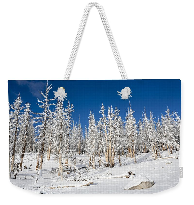 Winter Weekender Tote Bag featuring the photograph Snowy Trees by Kelley King