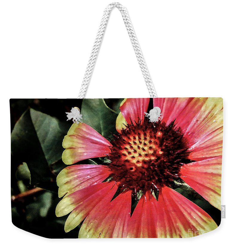 Flora Weekender Tote Bag featuring the photograph Soaking Up The Sun by Todd A Blanchard