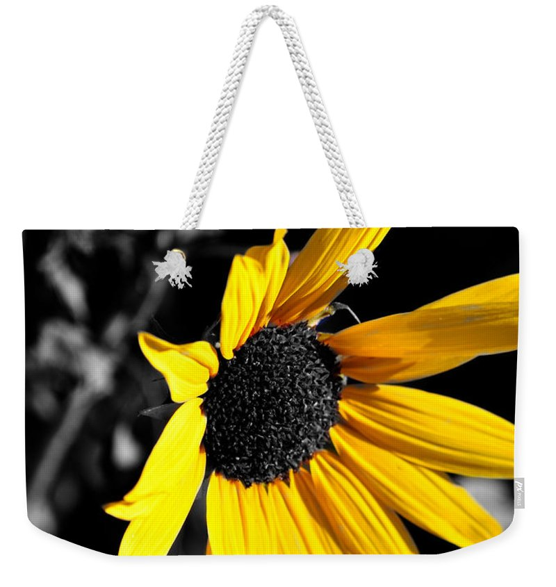 Clay Weekender Tote Bag featuring the photograph Soaking Up The Yellow Sunshine by Clayton Bruster