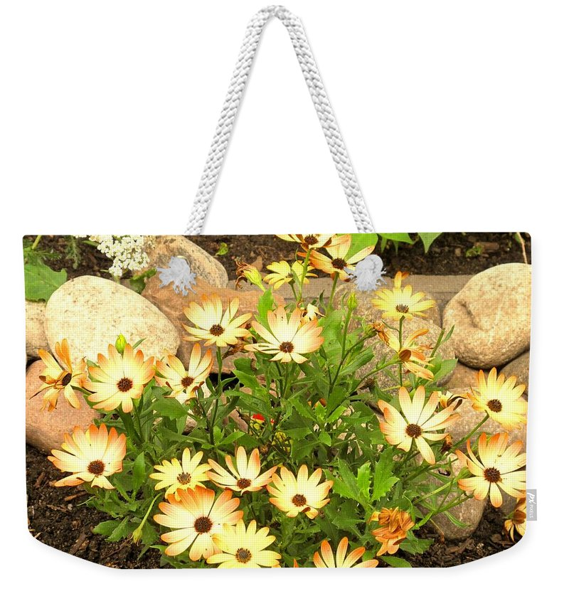 Flowers Weekender Tote Bag featuring the photograph Soft by Ian MacDonald
