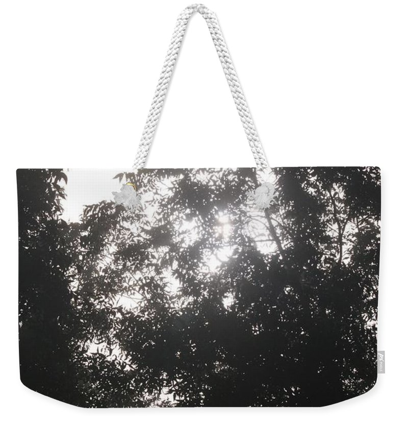 Light Weekender Tote Bag featuring the photograph Soft Light by Nadine Rippelmeyer