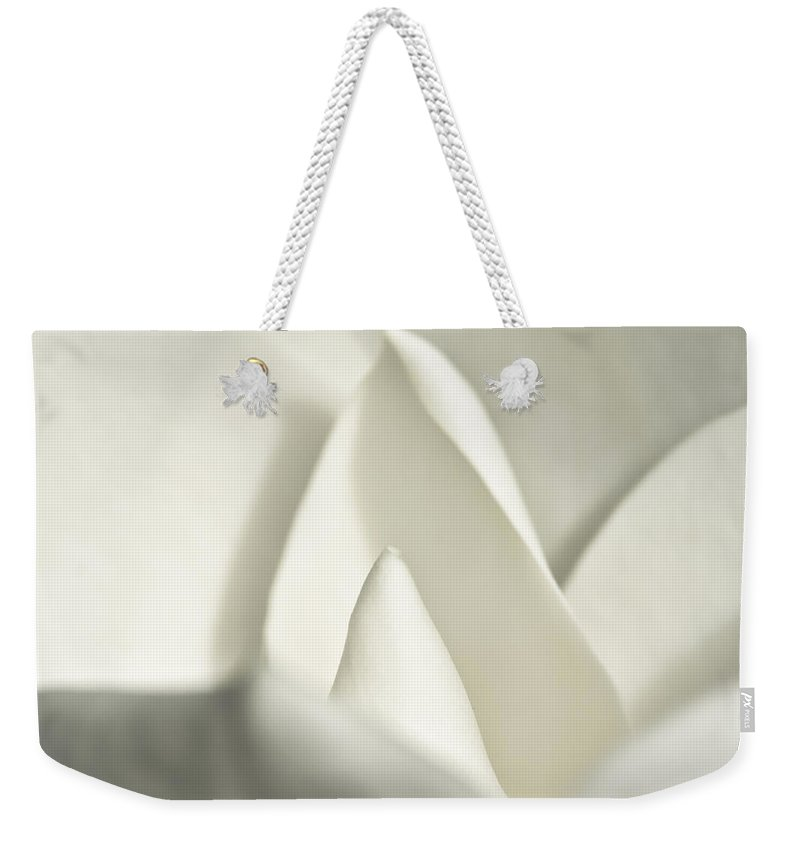 Magnolia Weekender Tote Bag featuring the photograph Soft Magnolia by Christopher Holmes