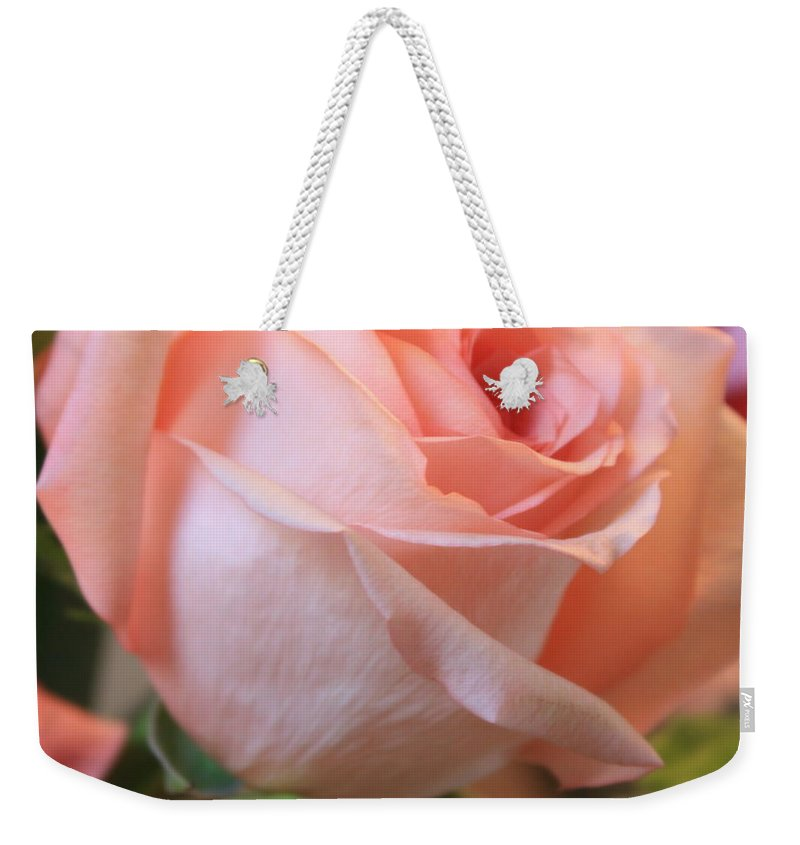 Pink Rose Weekender Tote Bag featuring the photograph Soft Pink Rose by Carol Groenen