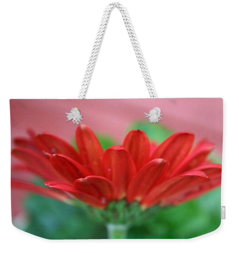 Flowers Weekender Tote Bag featuring the photograph Soft Red by Linda Sannuti