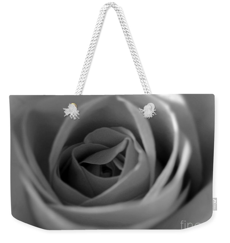 Rose Weekender Tote Bag featuring the photograph Soft Rose In Black And White by Nina Ficur Feenan