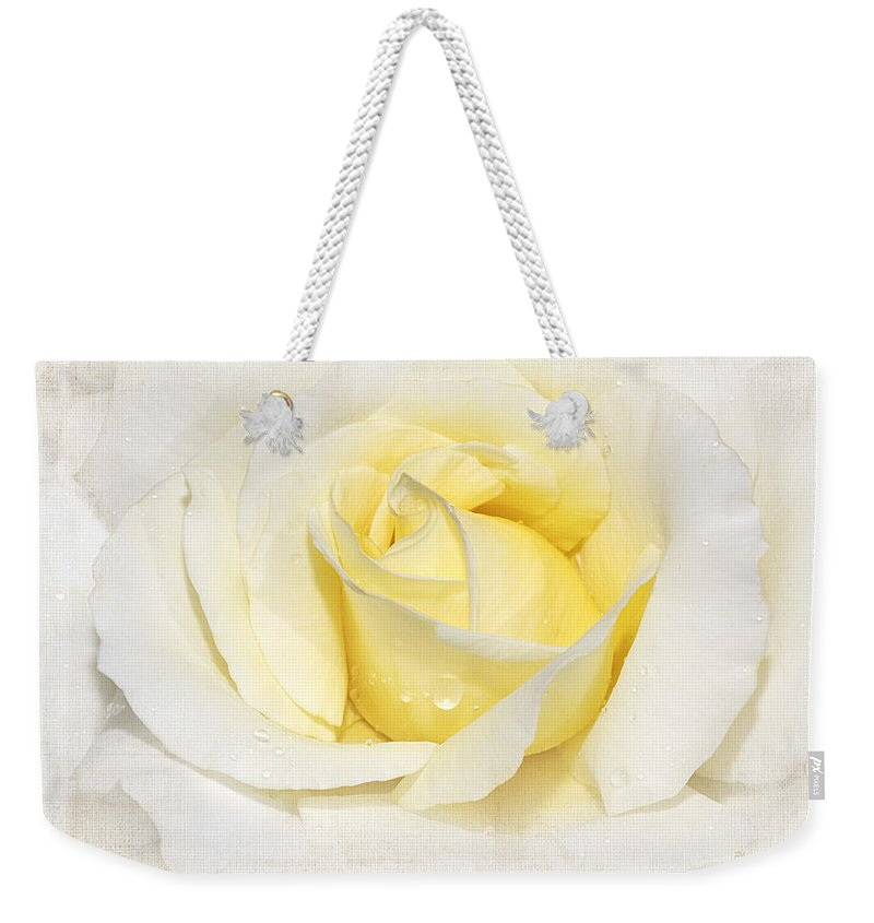 Rose Weekender Tote Bag featuring the photograph Softly Yellow Rose by Phyllis Denton