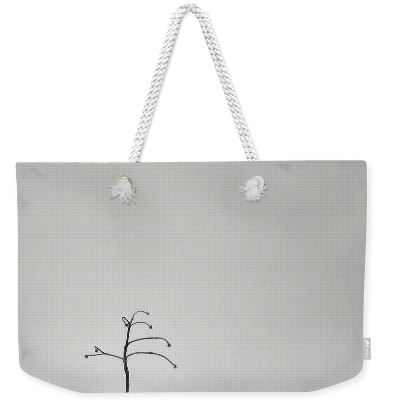 Macro Weekender Tote Bag featuring the photograph Solitary by Scott Norris