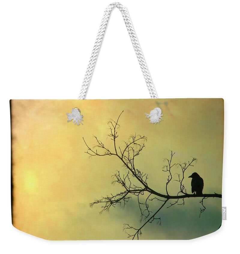 Through The Viewfinder Weekender Tote Bag featuring the photograph Solitude Mood by Gothicrow Images