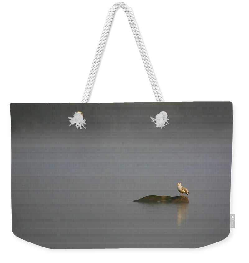 Water Pond Seagull Bird Feathers Tern Photograph Photography Digital Art Fine Art Weekender Tote Bag featuring the photograph Solitude by Shari Jardina