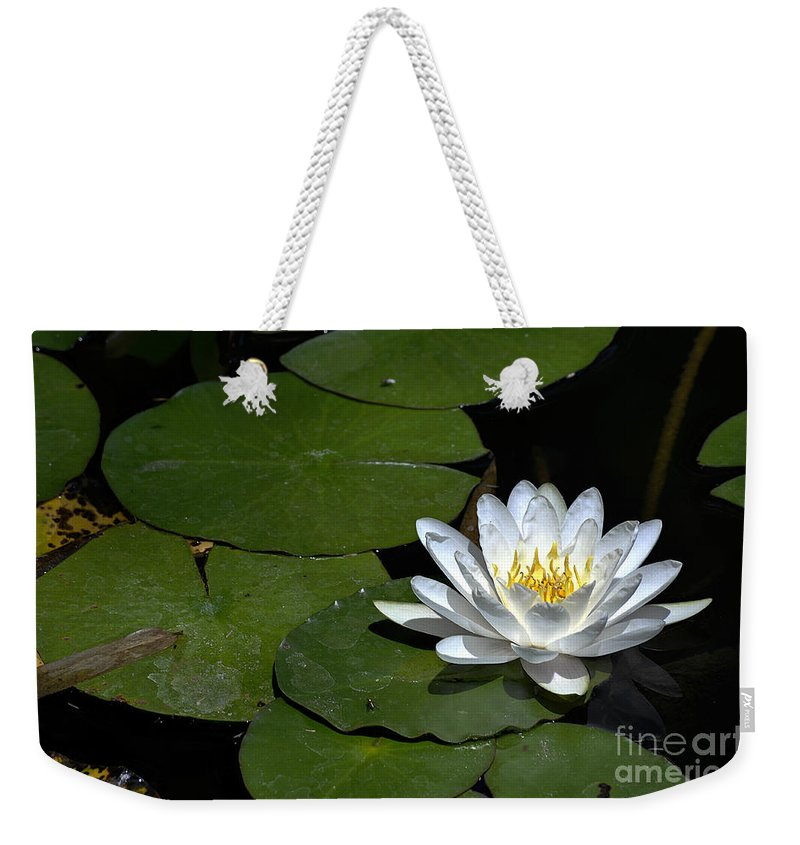 Clay Weekender Tote Bag featuring the photograph Solo by Clayton Bruster