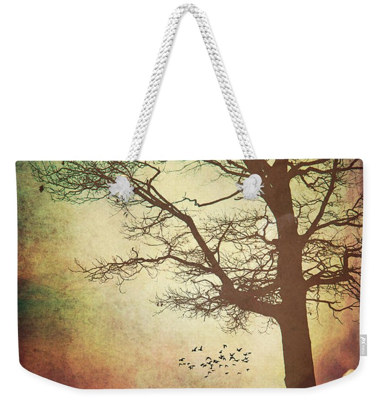 Lake Huron Weekender Tote Bag featuring the photograph Somedays by Kristin Hunt