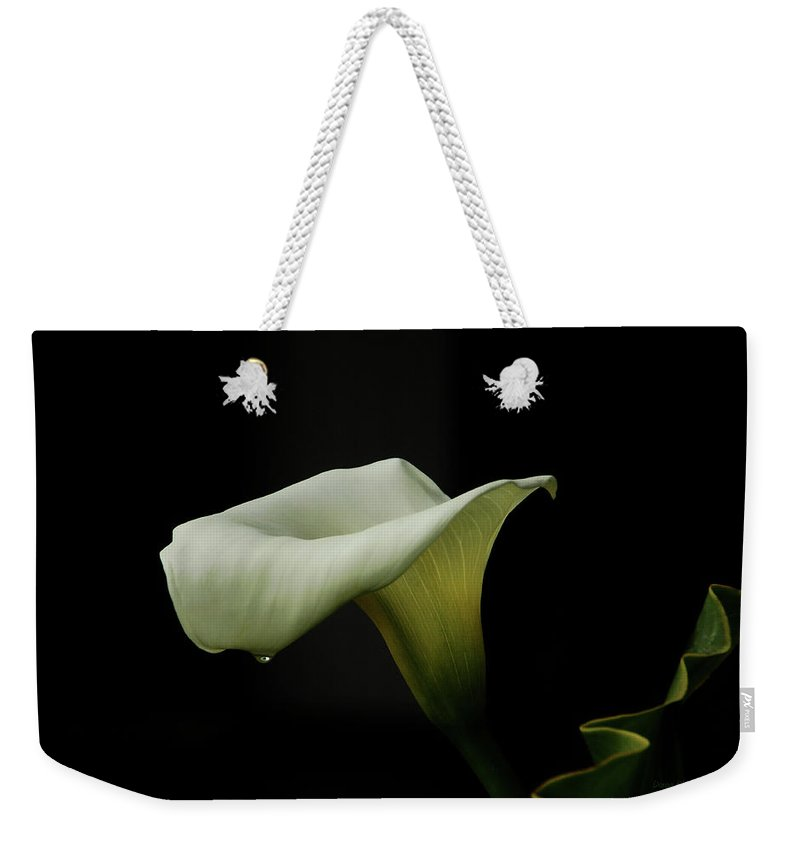 Calla Lily Weekender Tote Bag featuring the photograph Something About Lily by Donna Blackhall