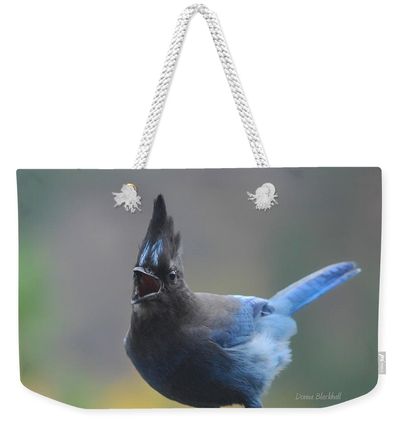 Bird Weekender Tote Bag featuring the photograph Song From The Heart by Donna Blackhall