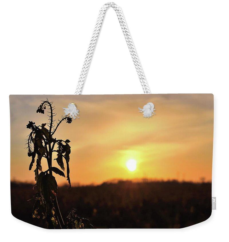 Sonnenuntergang Blume Flowwer Sky Himmel Weekender Tote Bag featuring the photograph Sonnenuntergang by Scimitarable