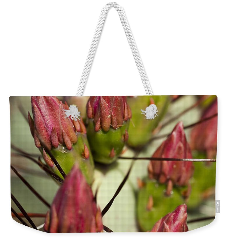 Prickly Pear Weekender Tote Bag featuring the photograph Soon To Bloom by Kelley King
