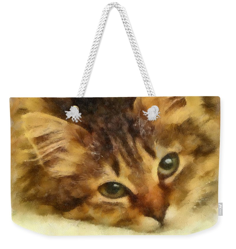 Cat Weekender Tote Bag featuring the photograph Soulful Eyes by Betsy Foster Breen