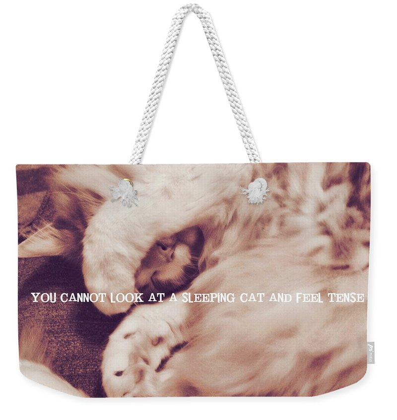 Cat Weekender Tote Bag featuring the photograph Sound Asleep Quote by JAMART Photography