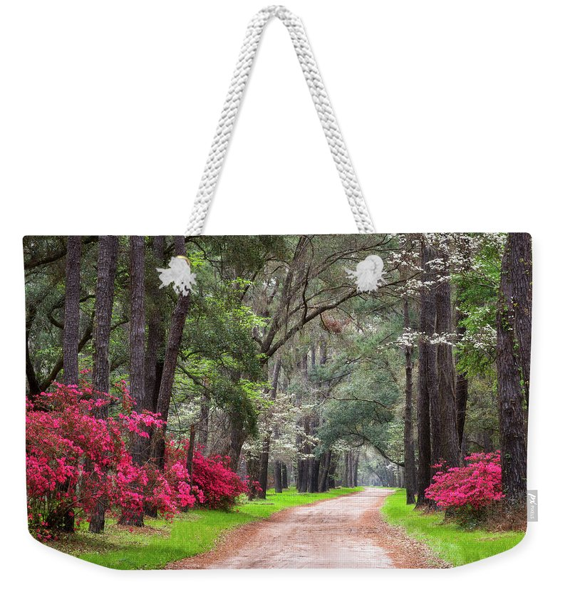 Charleston Weekender Tote Bag featuring the photograph South Carolina Lowcountry Spring Flowers Dirt Road Edisto Island Sc by Dave Allen