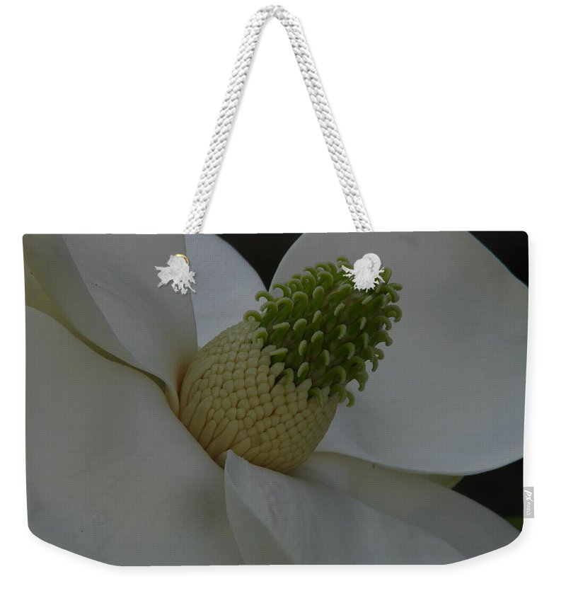 Art For The Wall...patzer Photography Weekender Tote Bag featuring the photograph Southern Manor by Greg Patzer