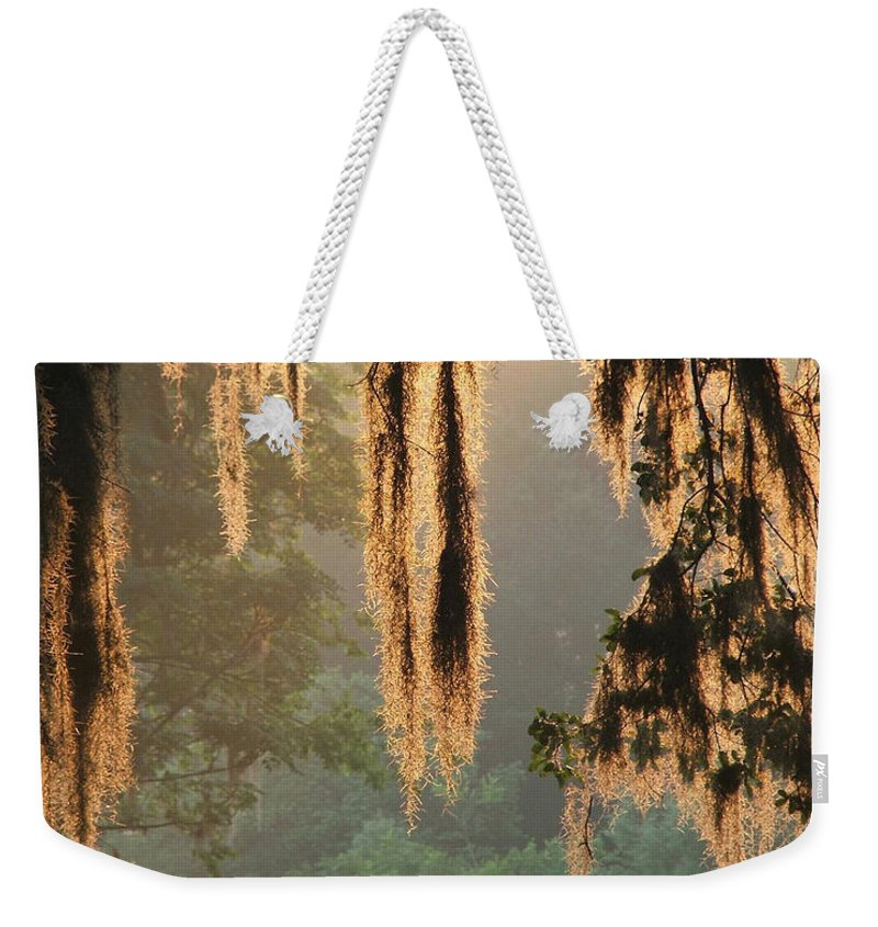 Spanish Moss Weekender Tote Bag featuring the photograph Spanish Moss In The Morning by Robert Meanor