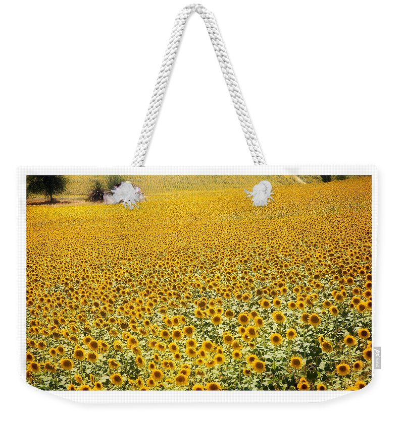 Sunflowers Weekender Tote Bag featuring the photograph Spanish Sunflowers by Mal Bray