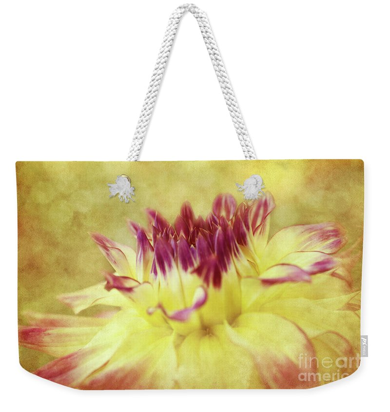 Dahlias Weekender Tote Bag featuring the photograph Sparkling Dahlia by Beve Brown-Clark Photography