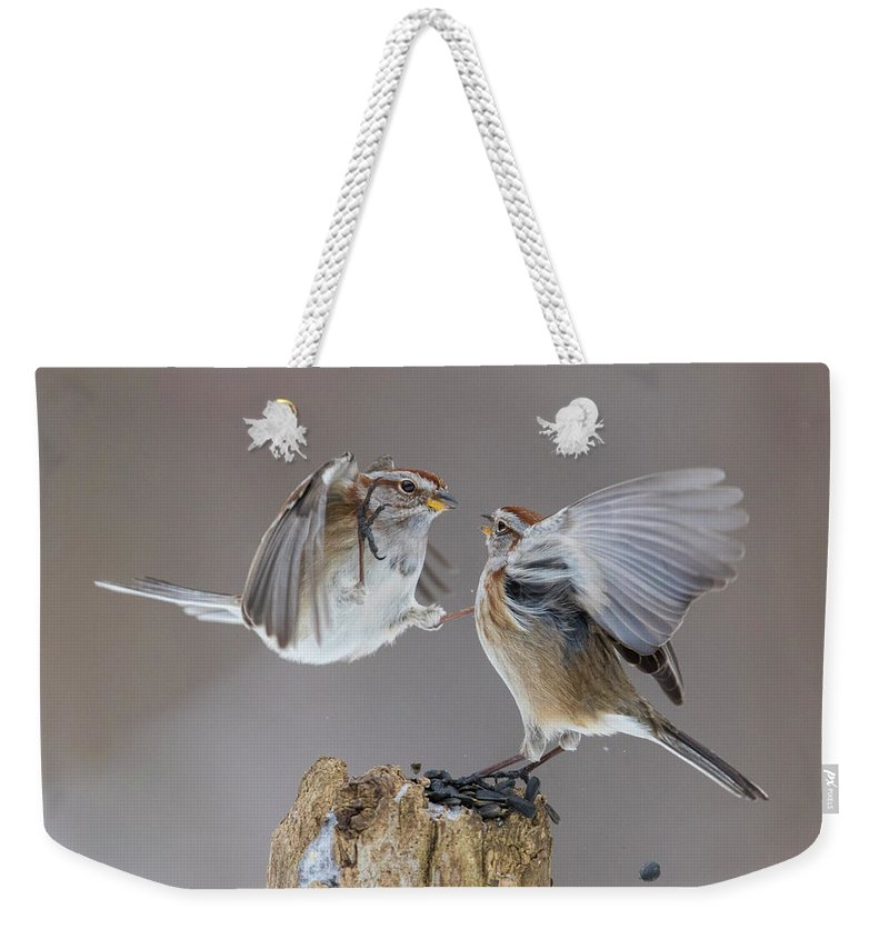 Tree Weekender Tote Bag featuring the photograph Sparrows Fight by Mircea Costina Photography