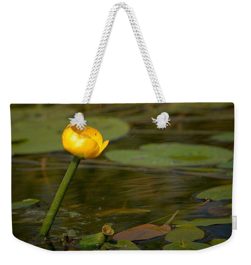 Lehtokukka Weekender Tote Bag featuring the photograph Spatterdock by Jouko Lehto